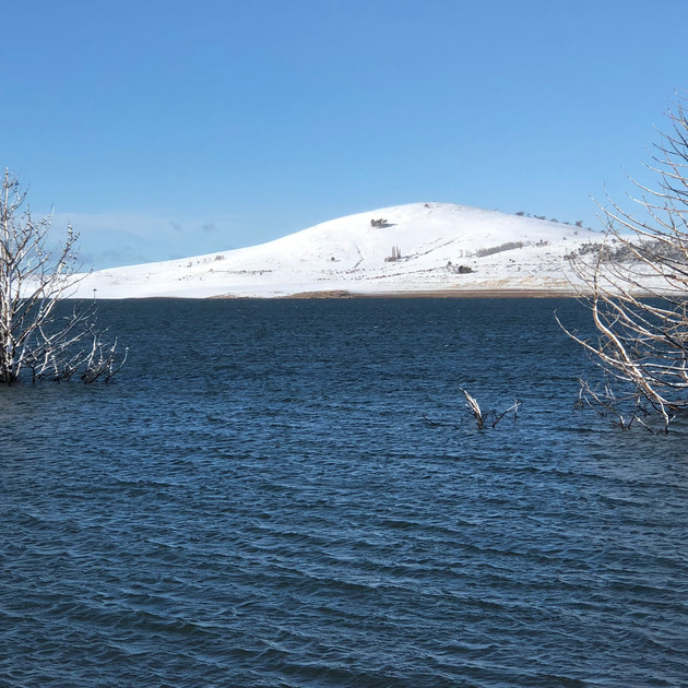 Stunning snow morning at Lake Eucumbene.