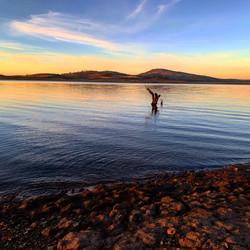 Sunrise at Trout Island - Lake Eucumbene