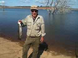 Rod - Eucumbene Trout