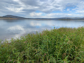 Autumn at Lake Eucumbene.JPG