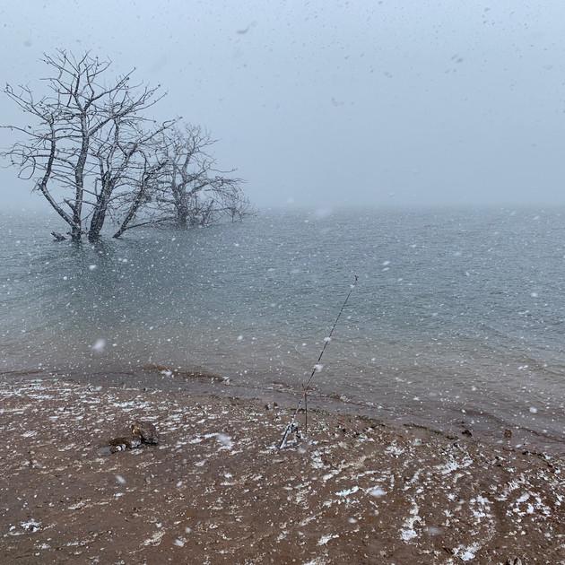 Heavy snow falling at Old Adaminaby - La