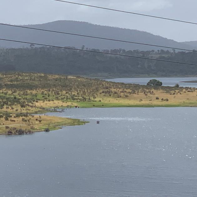 Tantangara Dam 2019.JPG