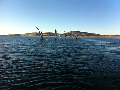 Lake Eucumbene at 54% - January 2012.JPG
