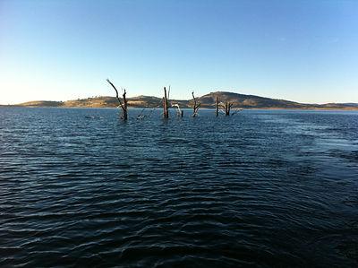 Lake Eucumbene at 54% - January 2012.JPG
