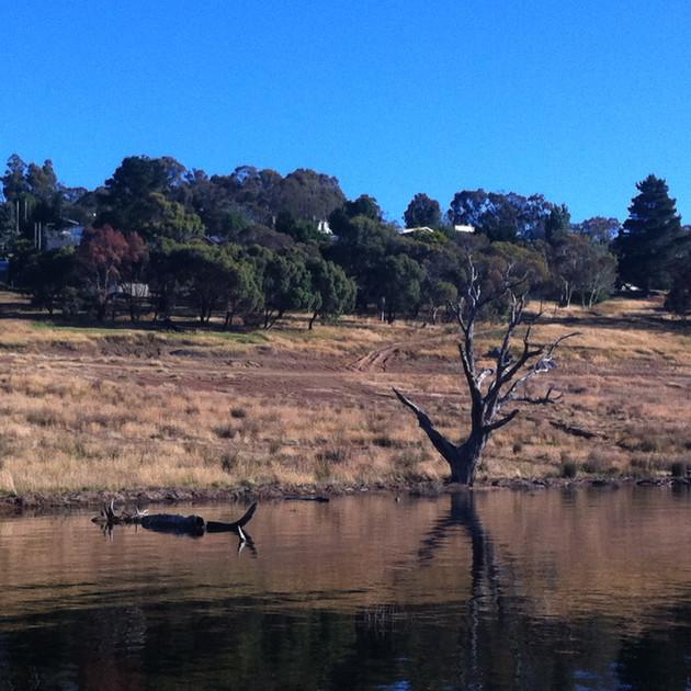 Old Adaminaby - Lake Eucumbene at 52%.JP