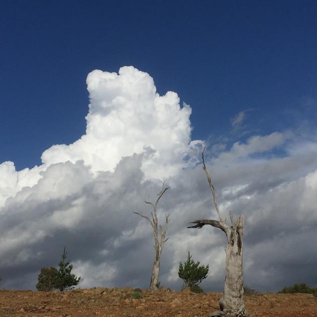 Cumulous cloud over Yens Bay - Lake Eucu