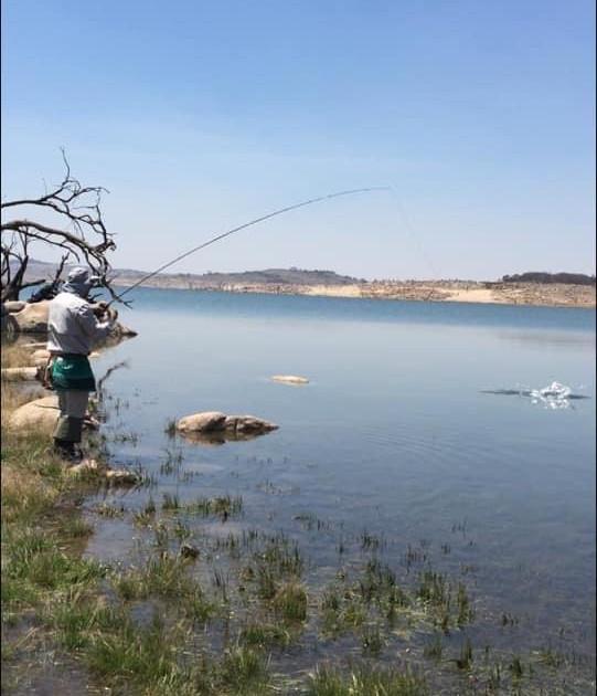 Allan Cunningham - Rushies Bay - Lake Eu