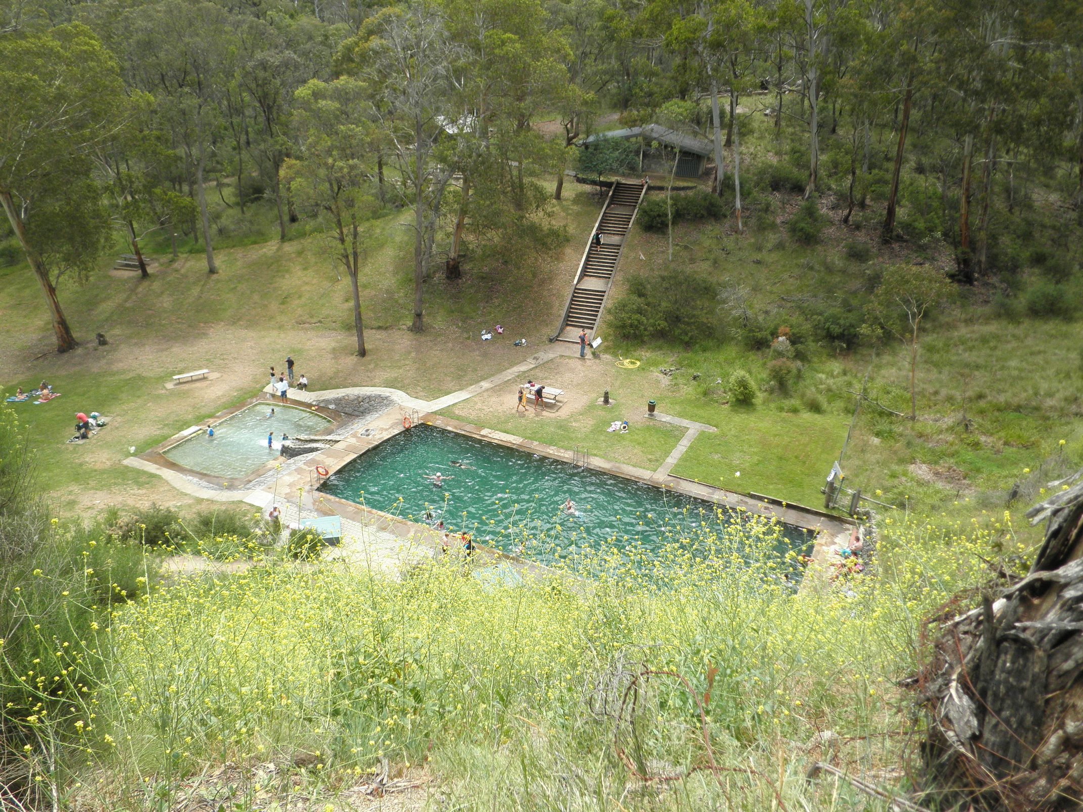 thermal_pool_yarrangobilly