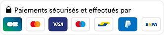logo-paiements-securises-mollie-fr.png