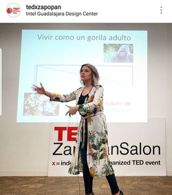 TEDxZapopanSalon 2018 3 Felicidad Instag