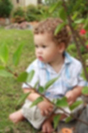 boy playing in garden