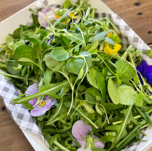 GREEN LEAVES WITH EDIBLE FLOWERS & MICRO HERBS