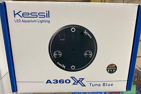 Kessil A360X Tuna blue