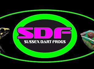 new logo1.jpg