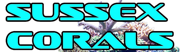 sussex corals logo stretched .jpg