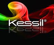 ico-Kessil new logo 300x250.jpg