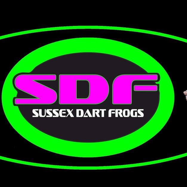 Visit Sussex dart frogs