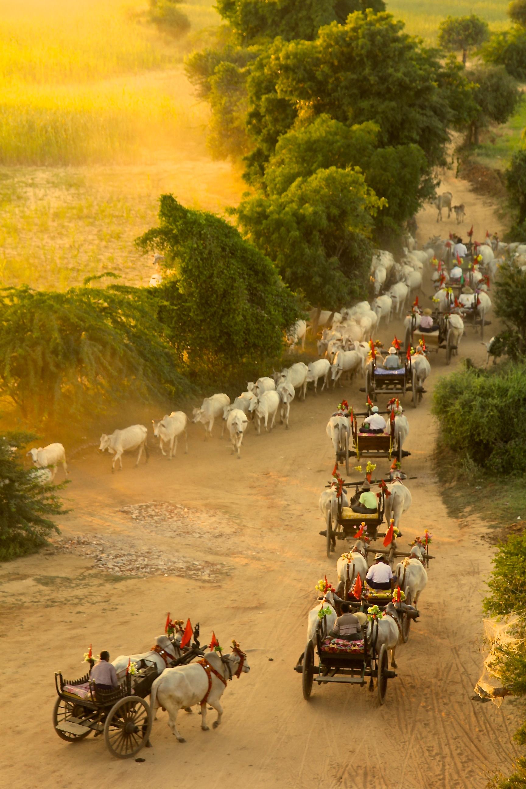 Old Bagan, Myanmmar