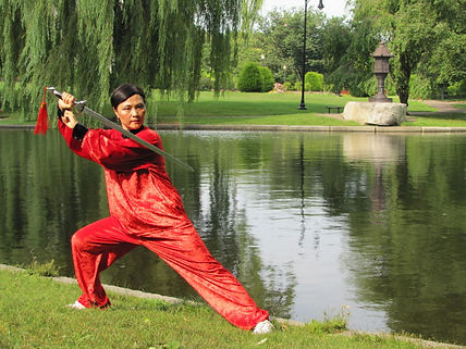 Tai Chi Group, Qi Gong Group, Tai Chi Institute, Tai Chi Qi Gong Organization, Tai Chi healing institute,