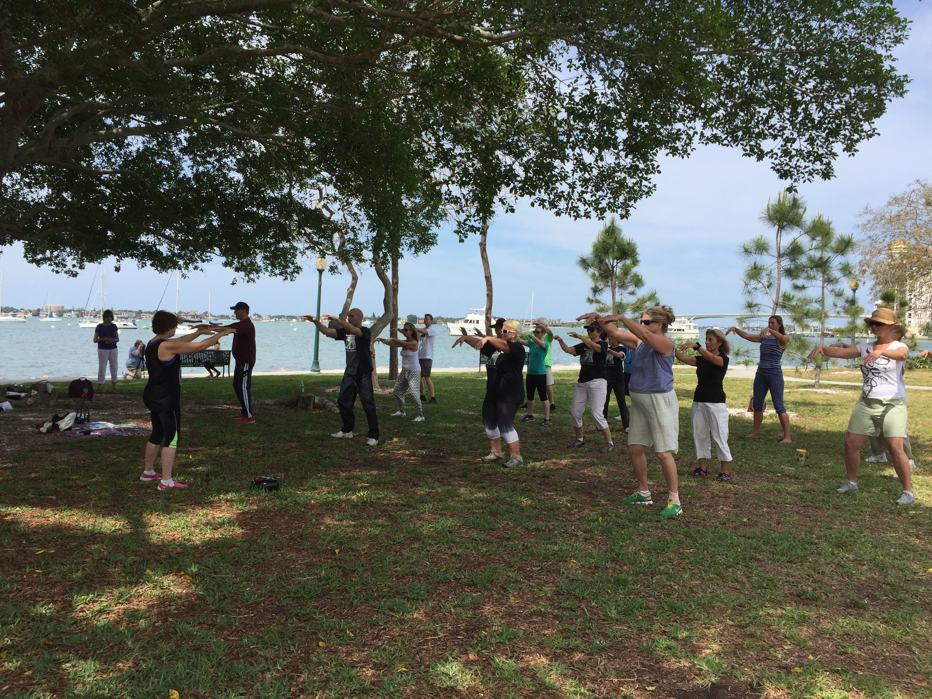 Qi Gong for Health