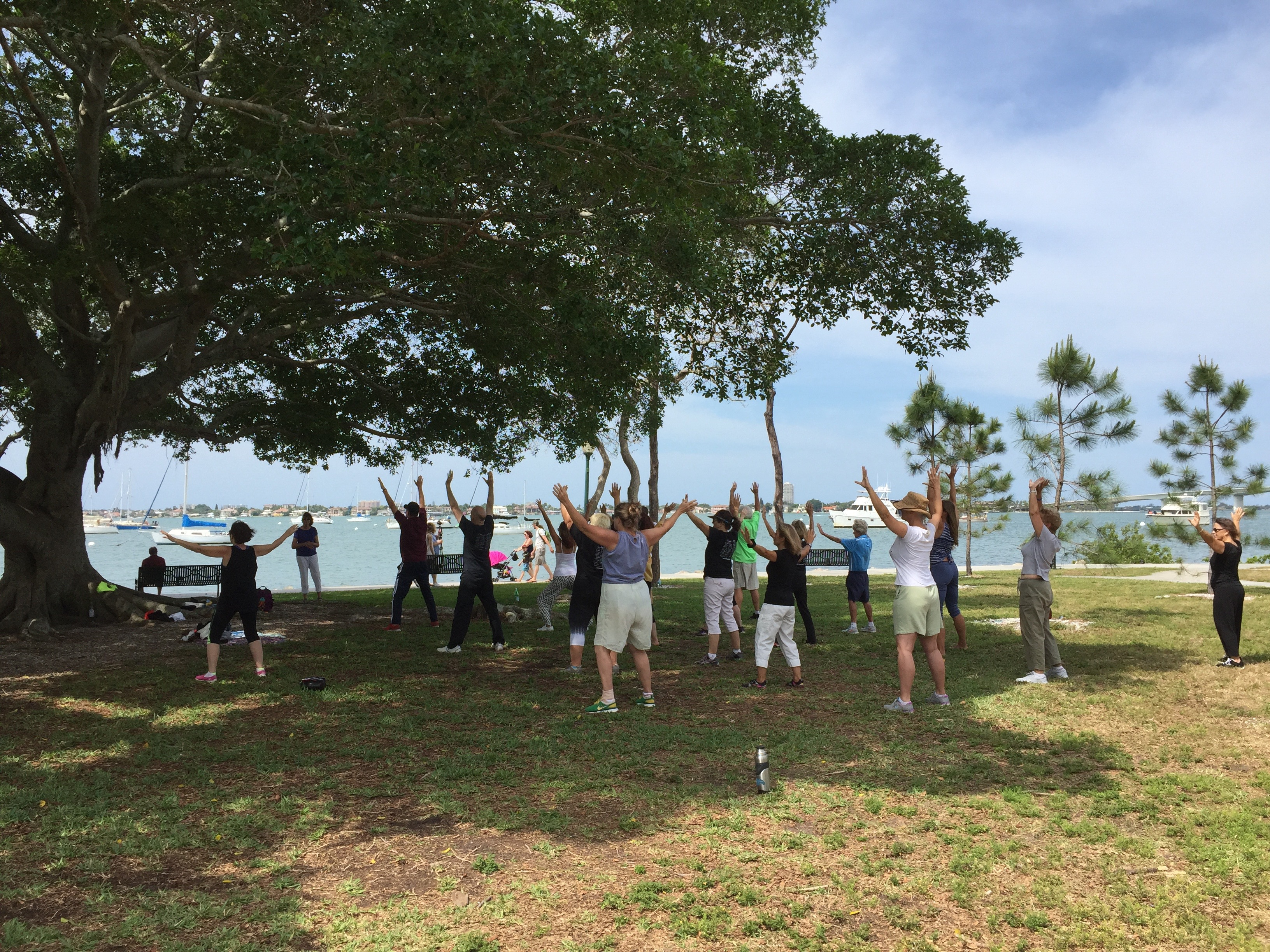 World Tai Chi Day 2016