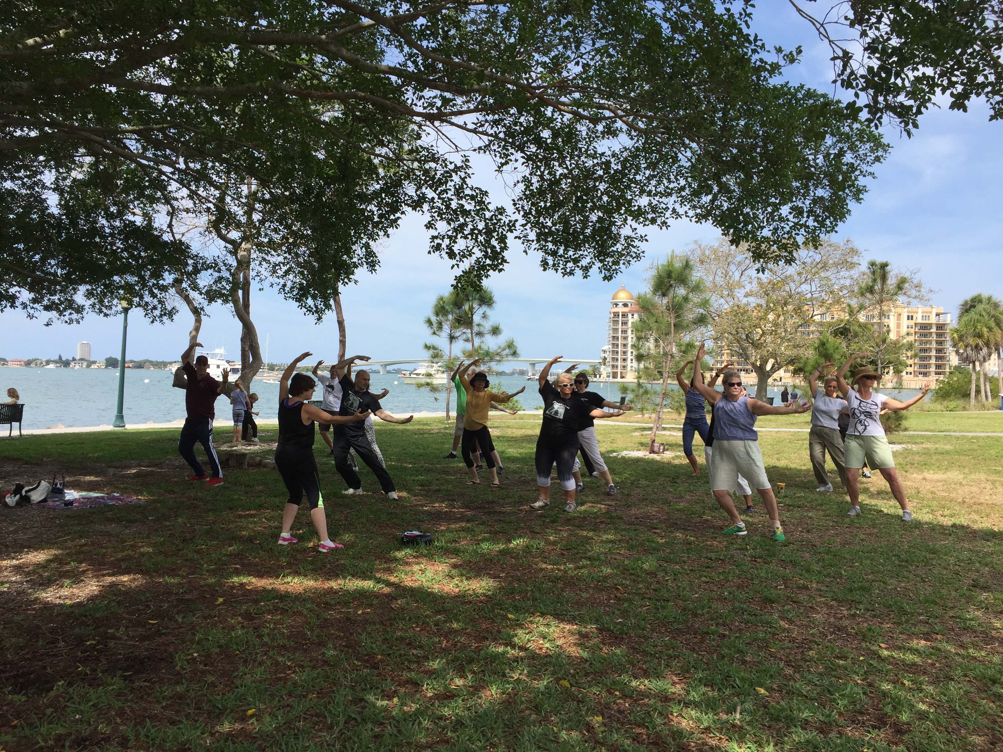 Qi Gong for Energy