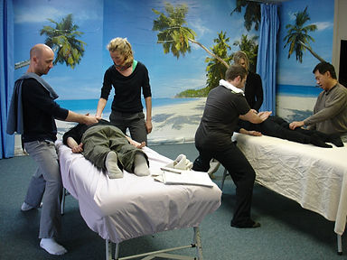 Tui Na Therapy Training Course