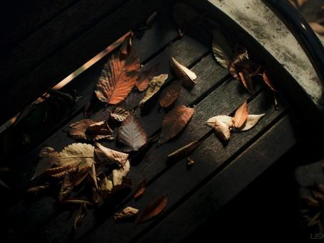 枯葉散る夕暮れは・・・USHUN、昭和の代表曲を撮る
