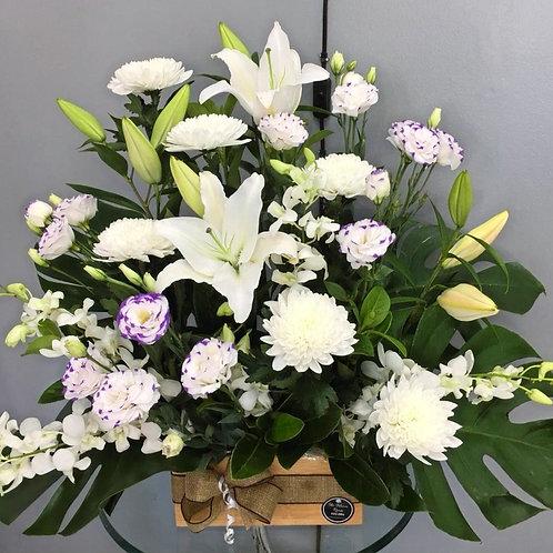 Boxed flower arrangements 15