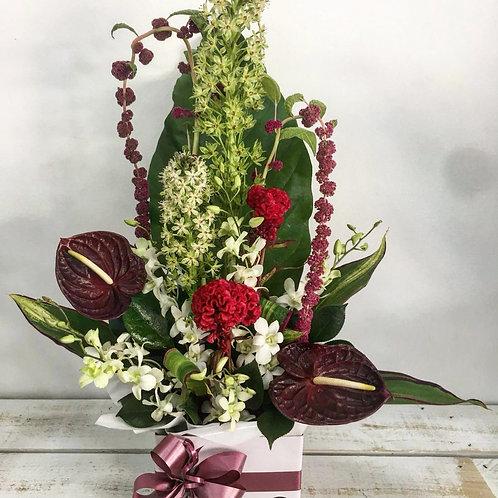 Boxed flower arrangements 32