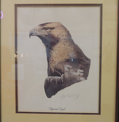 "1974 Guy Coheleach Print ""Imperial Eagle"""