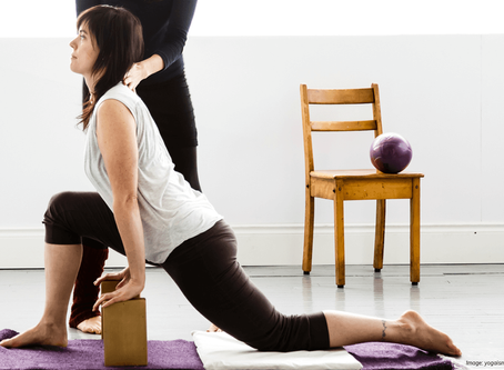 Yoga Therapy: Bio-Mechanic Alignment for Pain, Injury & Disease Relief