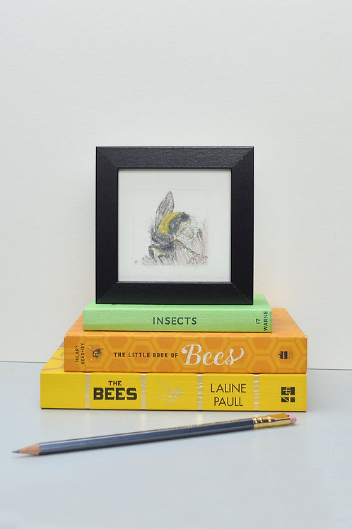 tiny square framed bee drawing