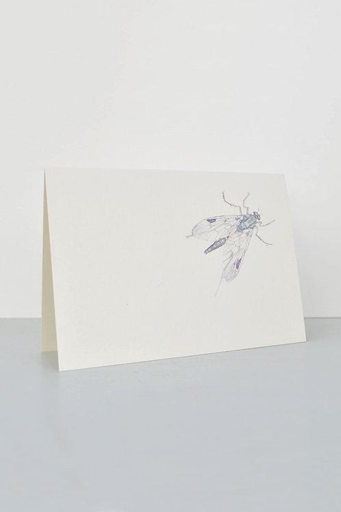 mystery beastie card