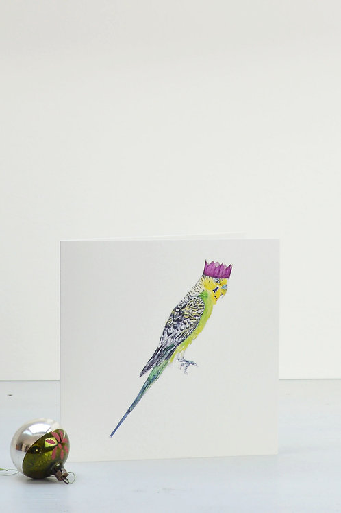 budgie and party hat Christmas card