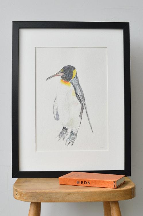 framed penguin drawing