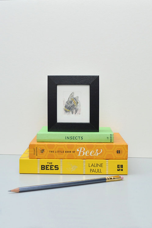 Tiny framed bee drawing