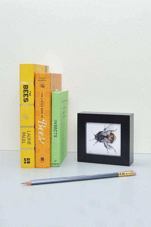 tiny wee framed bee print (II)