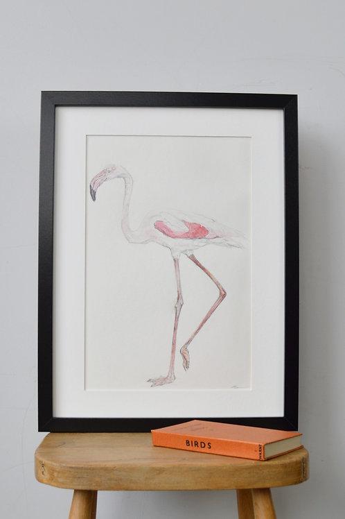 framed flamingo drawing