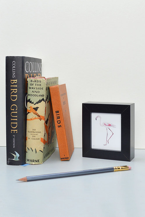 tiny wee framed flamingo print