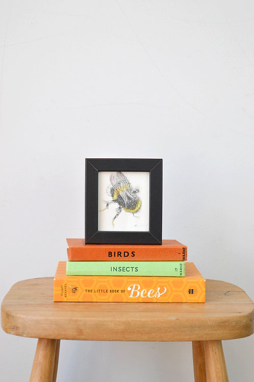 Tiny framed bee drawing (II)