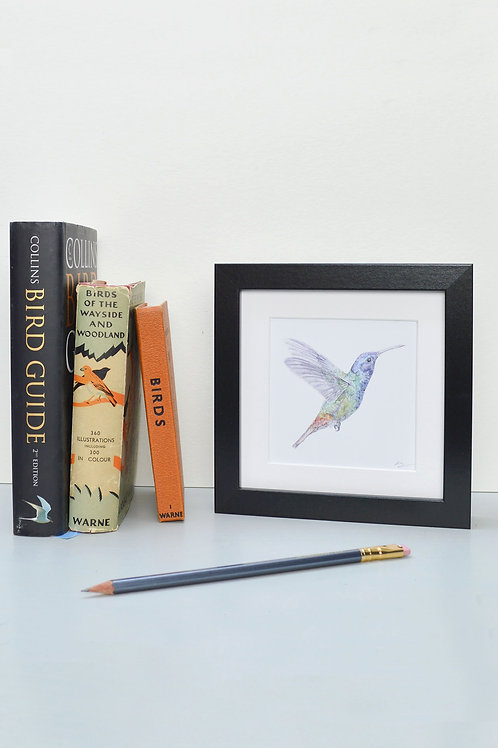 wee square framed hummingbird print