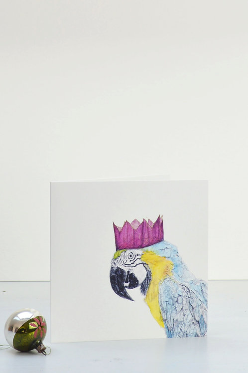 parrot and party hat Christmas card