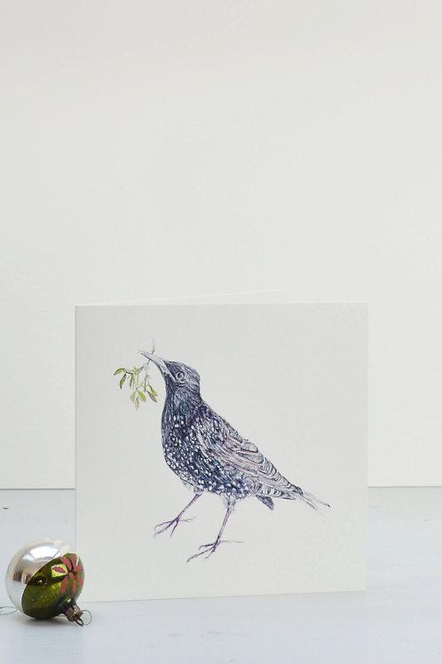 starling holding mistletoe Christmas card