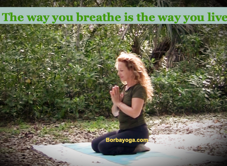 Pranayama - The Art of Breathing