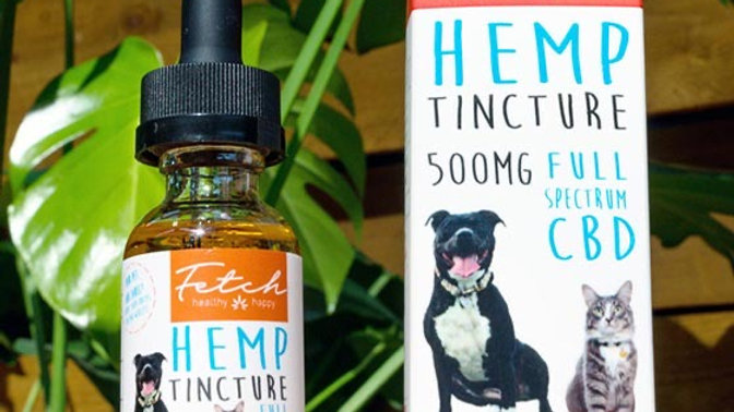 Fetch Hemp 500mg- Fetch
