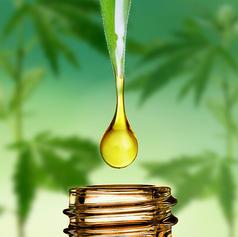 CBD oils - Tintures