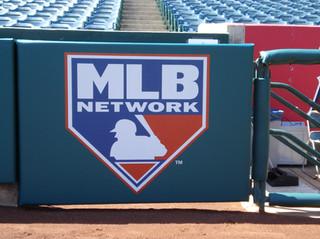 SportsVenuePadding.com | Outfield Pads | Baseball | Softball | Stadium | Facility Protective Padding | Post pads | Rail pads | Gate Pads | MLB