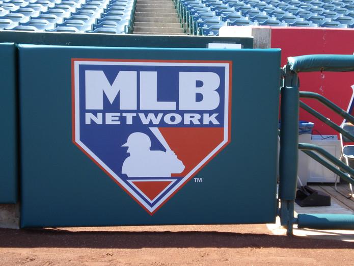 SportsVenuePadding.com   Outfield Pads   Baseball   Softball   Stadium   Facility Protective Padding   Post pads   Rail pads   Gate Pads   MLB