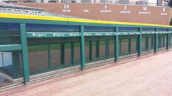 Rail & Wall Padding   Tigers
